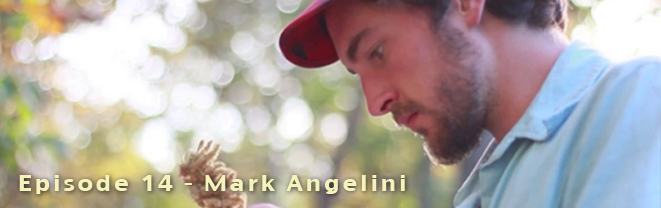 Mark Angelini
